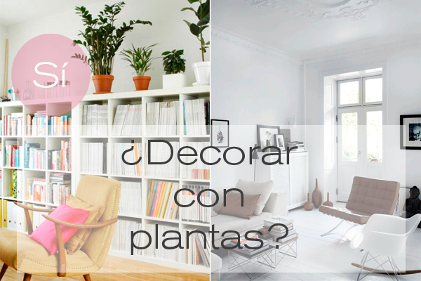 decorar_plantas_diariodeco11_blog_ana_pla_interiorismo_decoracion_0