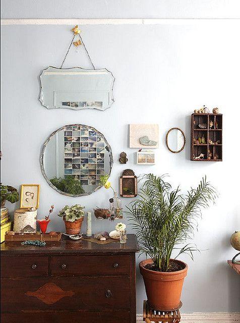 3_plantas_interior_necesitan_poca_luz_blog_ana_pla_interiorismo_decoracion_5