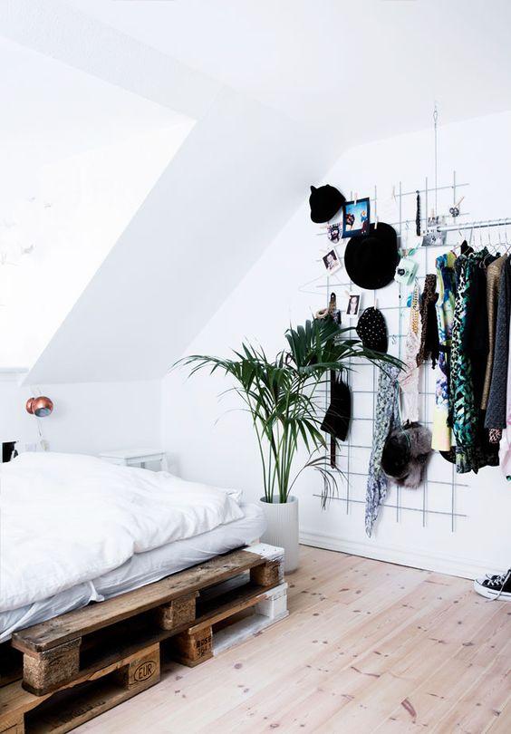 3_plantas_interior_necesitan_poca_luz_blog_ana_pla_interiorismo_decoracion_6