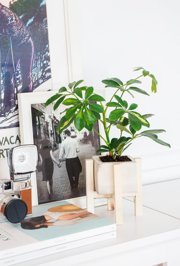diy_macetero_cemento_madera_estilo_nordico_blog_ana_pla_interiorismo_decoracion_17