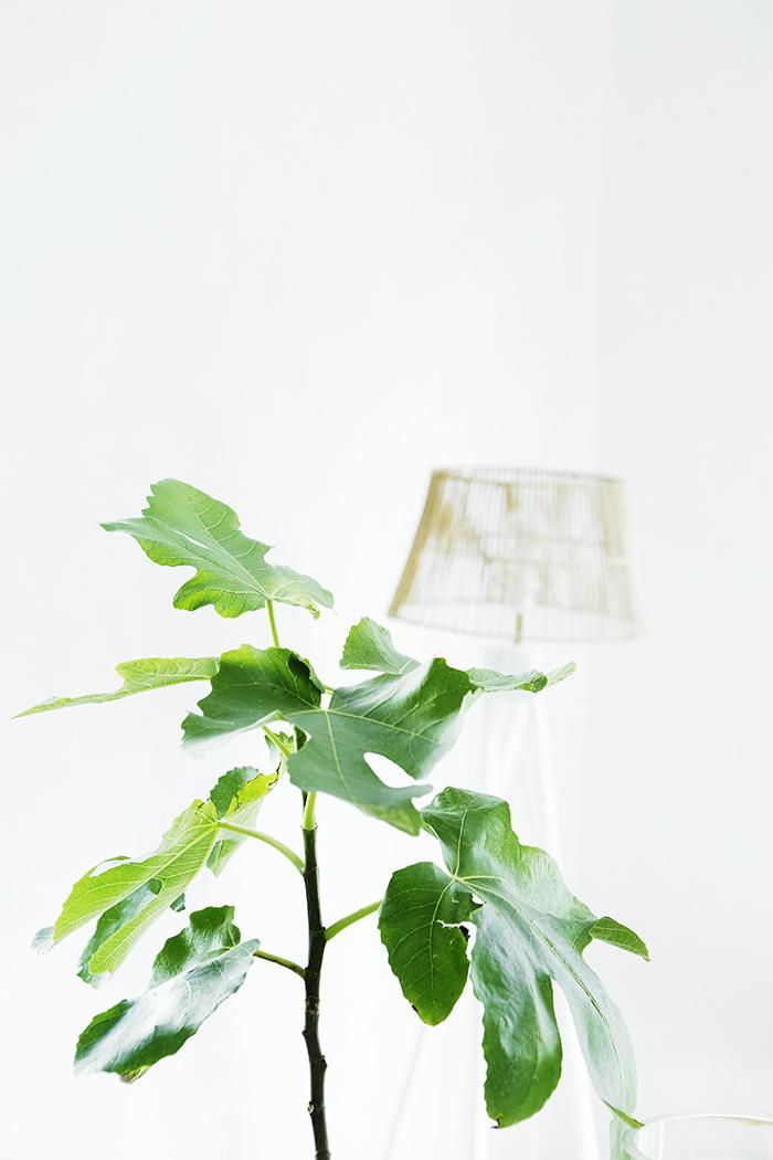 piso_alquiler_palmademallorca_blog_ana_pla_interiorismo_decoracion_4