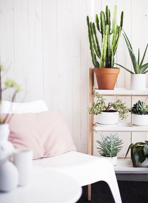 rincon_plantas_decoracion_blog_ana_pla_interiorismo_decoracion_10
