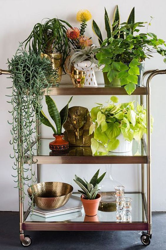 rincon_plantas_decoracion_blog_ana_pla_interiorismo_decoracion_12