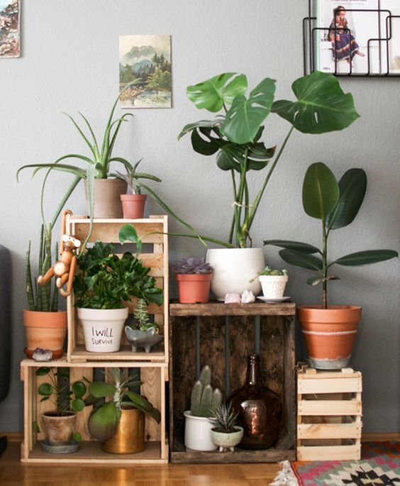 rincon_plantas_decoracion_blog_ana_pla_interiorismo_decoracion_3