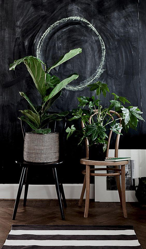 rincon_plantas_decoracion_blog_ana_pla_interiorismo_decoracion_4